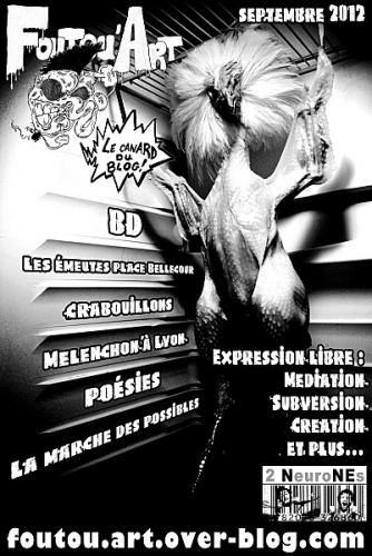 Foutou'art, Bilan Sarkozy, Presse participative? Pseudos